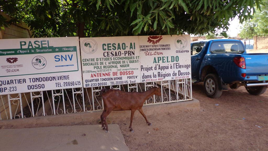 Devant le siège local de l'antenne Dosso du CESAO, Pôle Régional Niger.