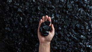 關於澳煤的報道圖片