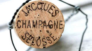 A genuine Jacques Selosse Champagne cork