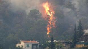 На юге Франции уже третий день продолжают бушевать лесные пожары