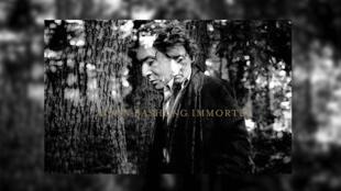 Le Printemps de Bourges 2019 rendra hommage à Alain Bashung (pochette d' «Immortel», l'intégrale d'Alain Bashung sortie le 1er mars 2019).