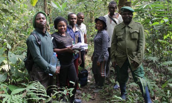 L'ONG Erudef installe des pièges à Camera dans le Tofala Hills Wildlife Sanctuary pour protéger les gorilles et les chimpanzés.