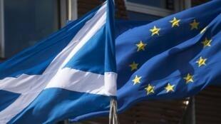 Por 63 votos contra 54, los diputados escoceses votaron contra el retiro de la bandera de la UE tras el Brexit.