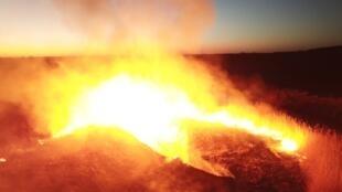 Владимир Зеленский объявил, что ситуация с лесными пожарами в зоне отчуждения ЧАЭС находится под контролем.