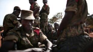 Les  Forces armées centrafricaines (Faca).