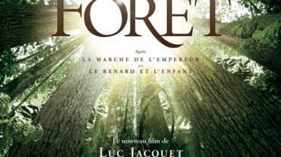 Affiche du film «Il était une forêt».