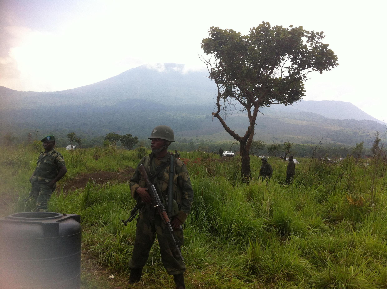 Le parc des Virunga vu depuis le Mikeno Lodge (image d'illustration).