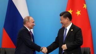 中国国家主席习近平和来华访问并出席上海合作组织青岛峰会的俄国总统普京握手   2018年6月10日