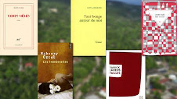 Le séisme du 12 janvier 2010 au prisme de la littérature haïtienne.