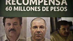 Prisão de El Chapo poderia resultar em recompensa milionária.
