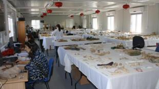 Dans un laboratoire de Nicosie, les techniciens tentent de reconstituer les squelettes des disparus, à partir d'ossements exhumés.