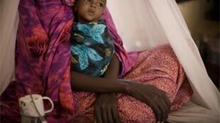 En varias regiones lejos de las costas de Kenia, de Etiopía y de Somalia  se está cerca de la hambruna. La desnutrición de los niños es particularmente importante.