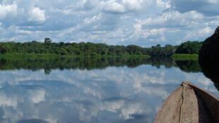 Une vue du parc national de la Salonga.