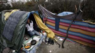 Người nhập cư sống trong rừng Calais ở miền bắc nước Pháp chờ cơ hội trốn sang Anh.