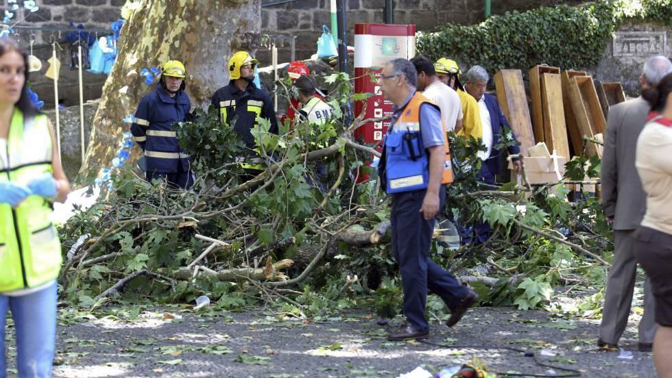 Queda de árvore durante evento religioso deixa 12 mortos na Ilha da Madeira