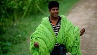 Le Bangladesh est devenu en deux ans le premier importateur de coton au monde, devant le Vietnam et la Chine. Photo : Ouvrier qui porte du coton à sécher au Bangladesh.