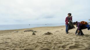 Des volontaires nettoient les déchets échoués sur une plage de Valparaiso, au Chili, le 23 septembre 2016.