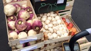 Alimentos reciclados do mercado da região de Rungis