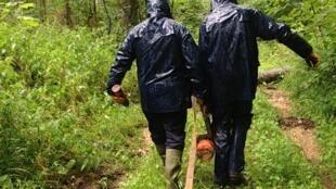 Une équipe de déminage dans la forêt de Verdun.