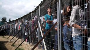 Мигранты стоят в очереди за едой в лагере Идомени на границе Греции и Македонии, 11 мая 2016 года
