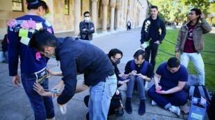 Les tensions à Hong Kong ont eu des répercussions sur les campus universitaires australiens (ici à l'Université du Queensland à Brisbane), provoquant des affrontements entre étudiants chinois pro-communistes et des étudiants qui soutiennent Hong Kong.