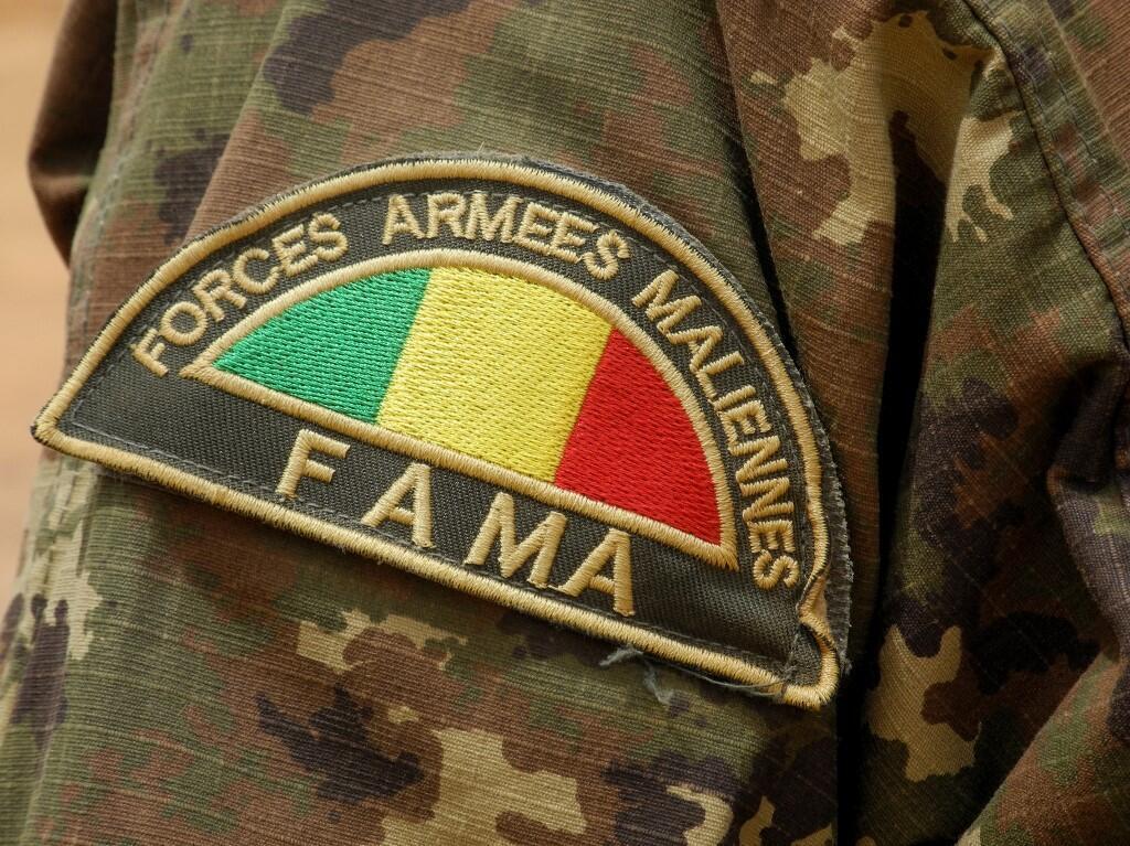Les Forces armées maliennes (Fama) accusées de crimes contre l'humanité.