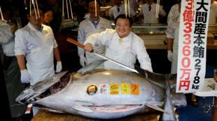 Kiyoshi Kimura, dueño de la cadena de restaurantes Sushi Zanmai, posa ante el gigantesco atún, en el mercado de Toyosu, 5 de enero 2019, Tokio, Japón.