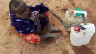 La famine frappe 12 millions de personnes dans la Corne de l'Afrique.