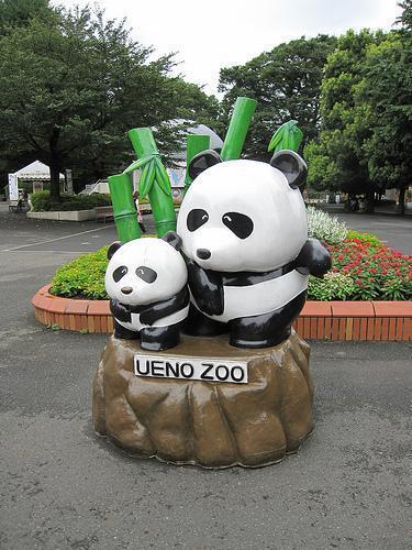 Gấu trúc đã trở thành biểu tượng của vườn Sở thú Ueno (DR)