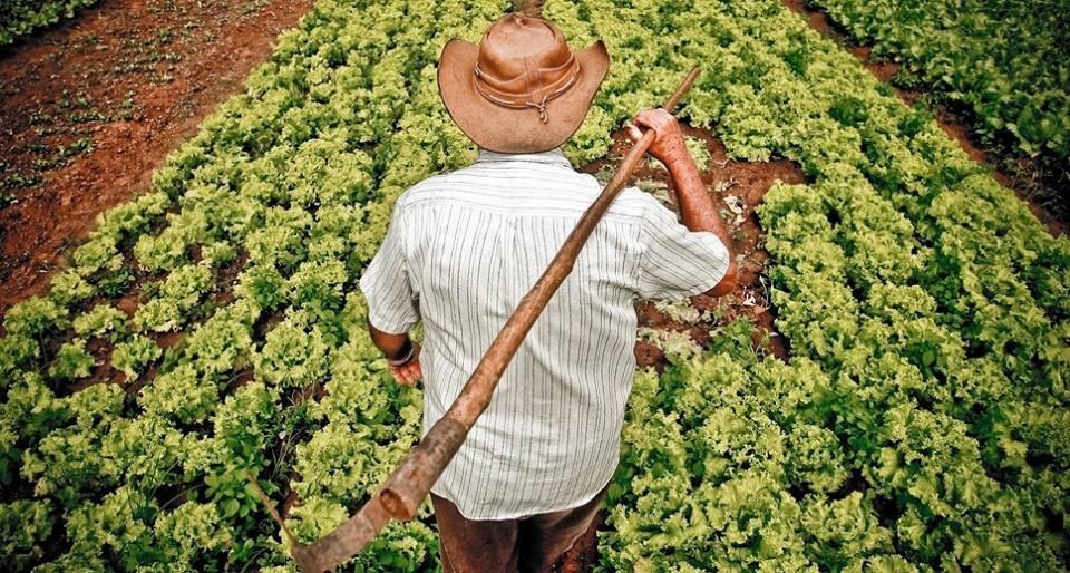 Movimento dos Trabalhadores Rurais Sem Terra está mudando sua estratégia.