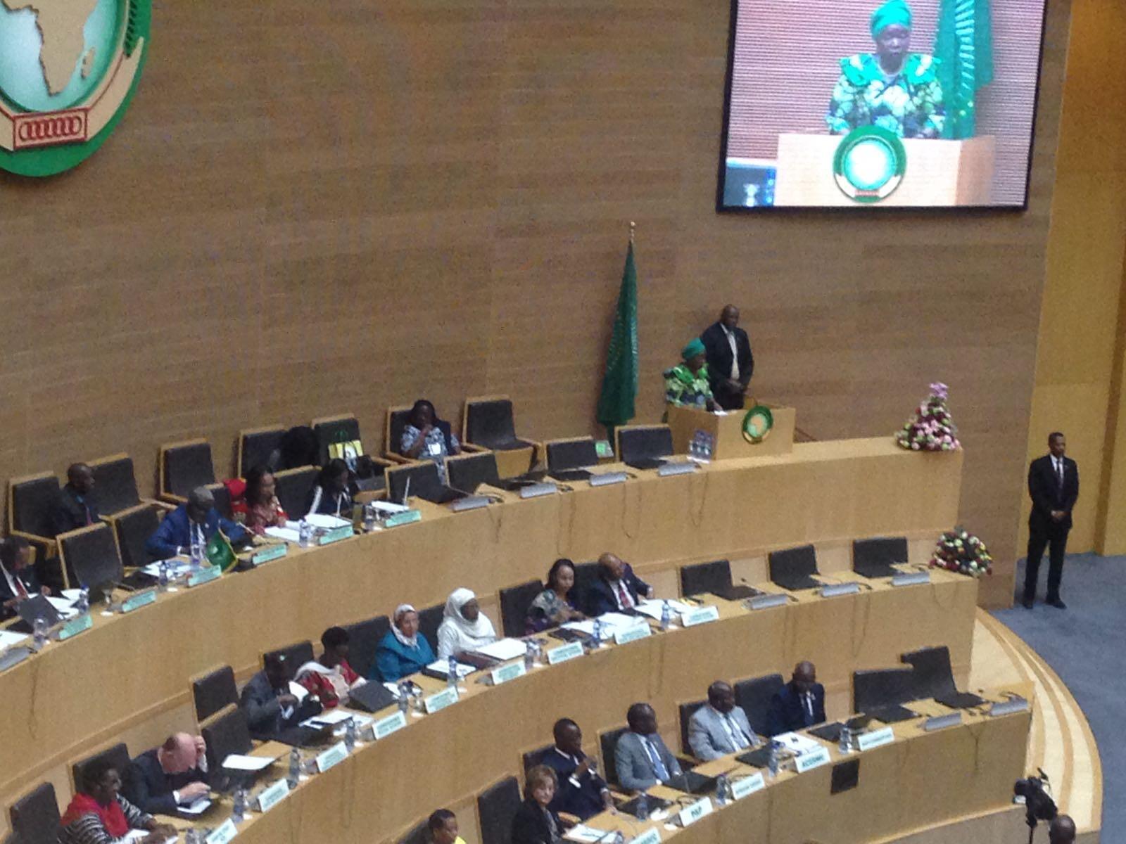 Ouverture du 28e sommet de l'Union africaine par la présidente sortante de la Commission Nkosazana Dlamini-Zuma.