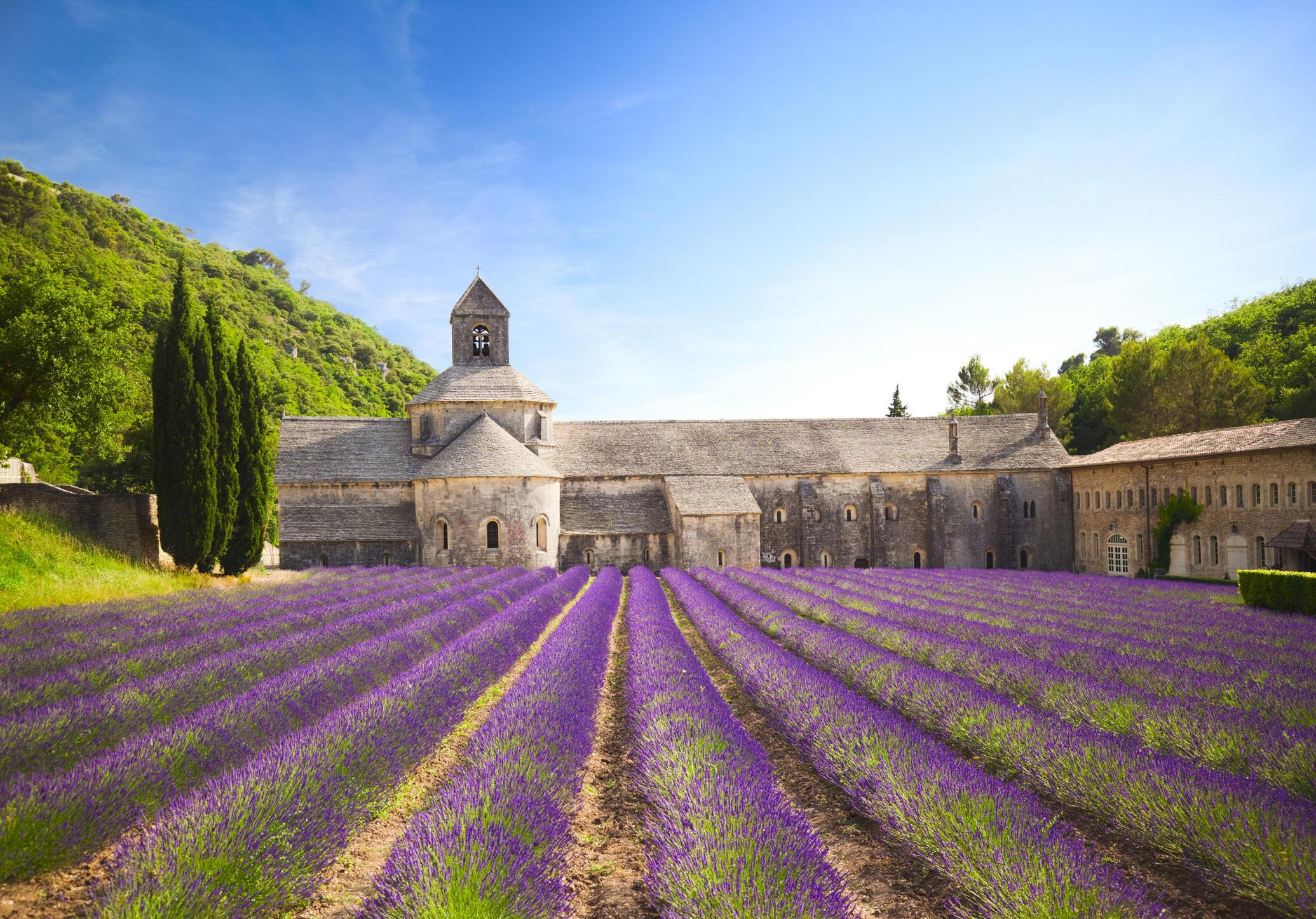入选2019梯次文古修复工程刮刮乐的修道院L'abbaye de Senanque  1148年打造