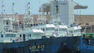 Bateaux de pêche à Dakar. Les autorités ont pris des mesures en Afrique de l'ouest mais elles restent insuffisantes, selon Ahmed Diamé, de Greenpeace.