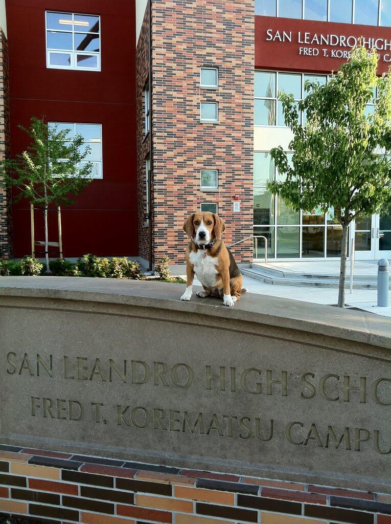San Leandro High School