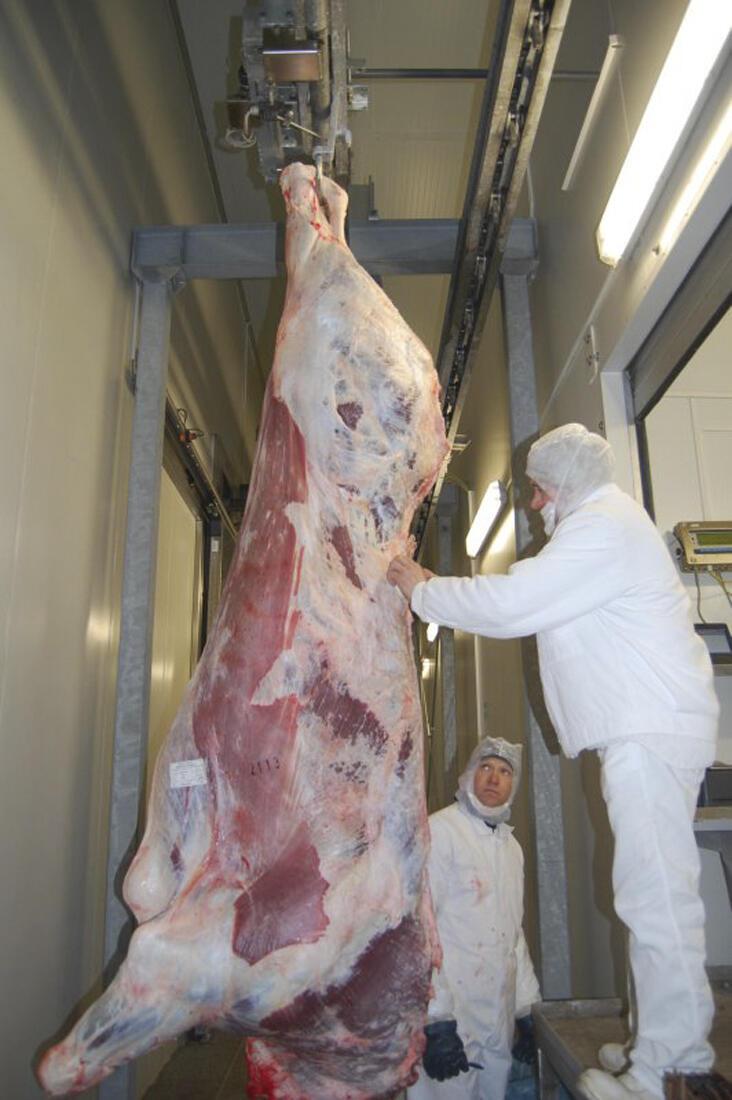 Açougue na cidade de Roman, na Romênia, país onde foram encontrados 100 kg de carne de cavalo identificados como carne bovina.