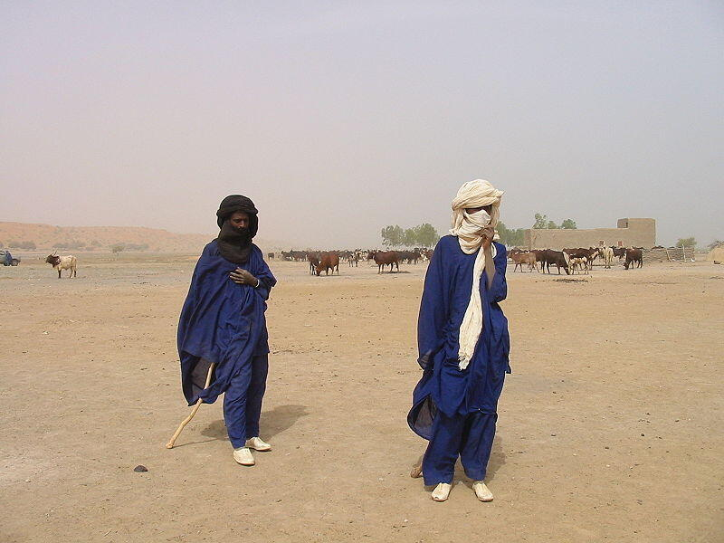 Des éleveurs peuls du Gourma, au sud de Gao, Mali (image d'illustration).