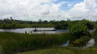 À une vingtaine de kilomètres au sud de Manakara, le ravitaillement des villages et le commerce se font en pirogue.