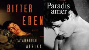 Couverture de «Bitter eden» ou «Paradis amer», de l'écrivainTatamkhulu Afrika.