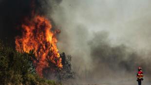 Incêndios em Portuga