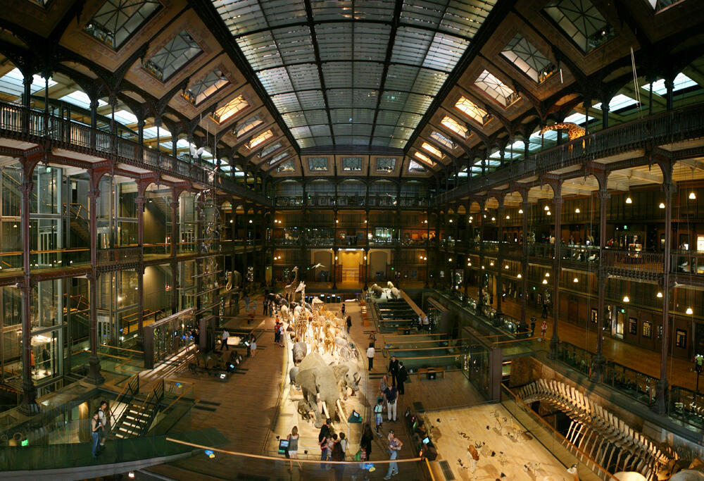 The Muséum national d'histoire naturelle in Paris