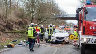 Tempestade Friederike derrubou árvores na Alemanha e provocou acidentes, como em Moers.