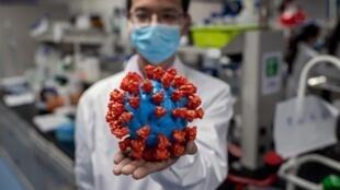 Wani inijiniya dauke da taswirar roba ta kyawar cutar coronavirus a birnin Beijing. 29/4/2020.