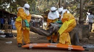 Une équipe de la Croix-Rouge évacue un homme suspecté d'être infecté par le virus Ebola, le 30 janvier 2015 à Forécariah en Guinée (Photo d'illustration).