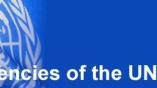 FAO afirma que Cabo Verde necessita de assistência alimentar