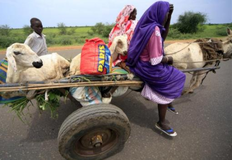 Displaced people from Sudan's Blue Nile state return to their homes after the army took control of the area at Al-Damazin town.