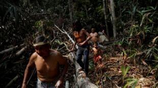 Indíos da tribo Mura caminham em uma área desmatada em terras indígenas não demarcadas dentro da Floresta Amazônica perto de Humaita, Estado do Amazonas, Brasil 20 de agosto de 2019.