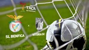 Imagem do relvado do encontro Benfica/Belelenses de 10 de janeiro de 2014i