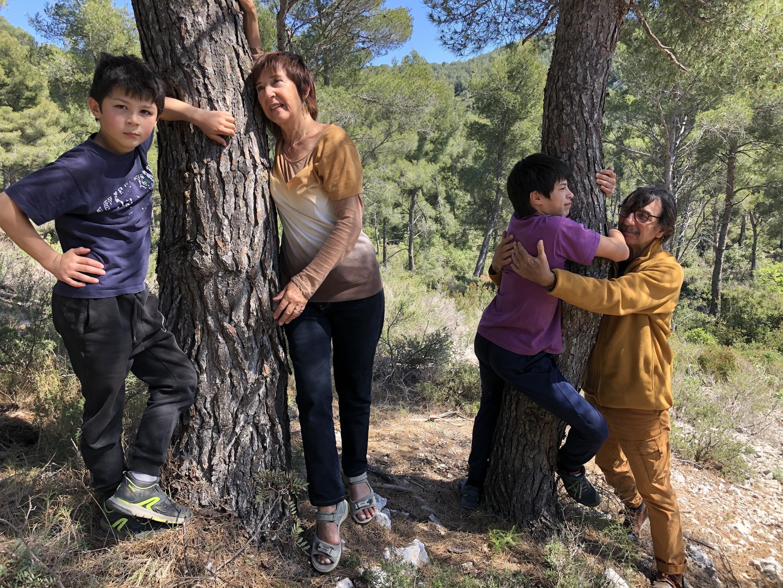 Le simple fait de se promener au milieu des arbres, dans un bois ou dans un parc renforcerait le corps et apaiserait l'esprit.