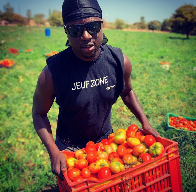Dans un champ de tomates, Thione Niang donne l'exemple aux jeunes qu'il forme.