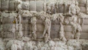 Des balles de coton sont stockées dans un entrepôt d'une usine de fil de coton dans le comté de Dali, la province du Shaanxi, en Chine.
